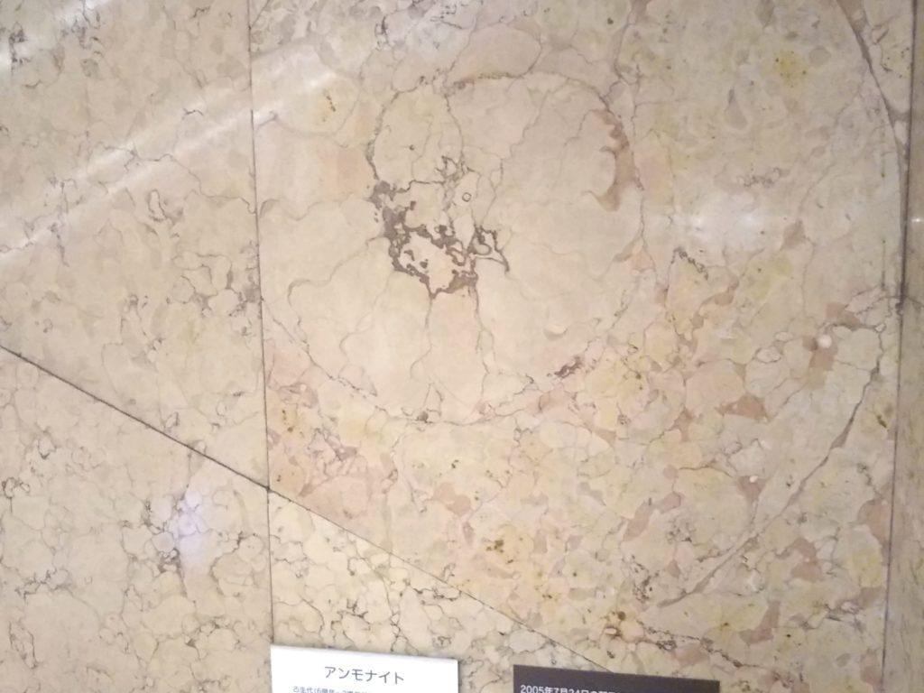 日本橋三越化石