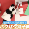 【工作動画】牛乳パックで作るお口がパクパク動く獅子舞の作り方